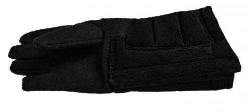 RH Coach / Master Glove